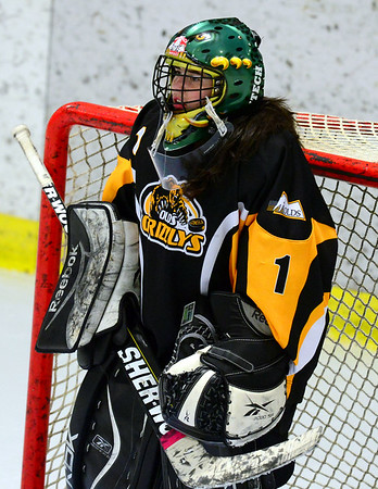 Lethbridge Barracudas vs olds Grizzlys Mar 21 2014