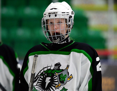 Sherwood Park Bladz vs Grande Prairie Knights Mar 20 2014