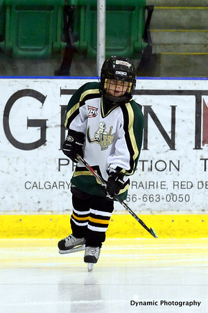 Okotoks Oilers vs Brooks Bandits Dec 8 2012