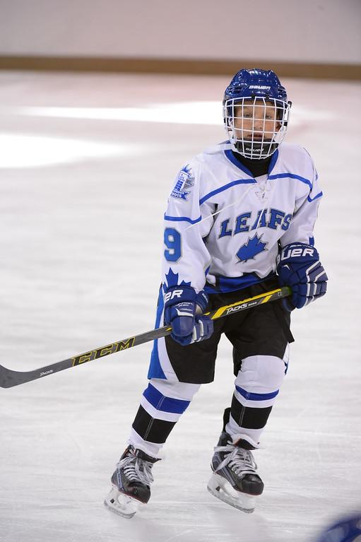 Leafs Hockey Club Pdqphoto