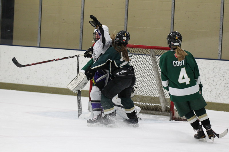 South Hills Amateur Hockey