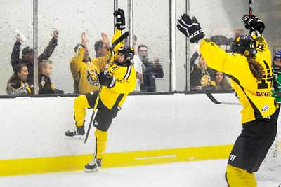 hockey_0014