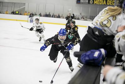 hockey_0012