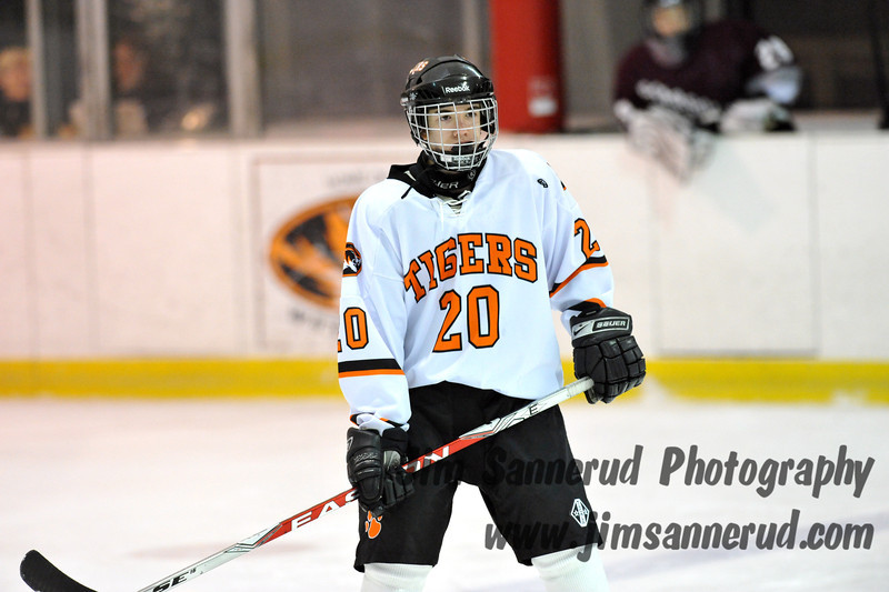White Plains High School Tigers vs. Scarsdale Raiders Varsity Ice Hockey at Ebersole Ice Rink, Thursday, January 31, 2013, White Plains lost 3-2