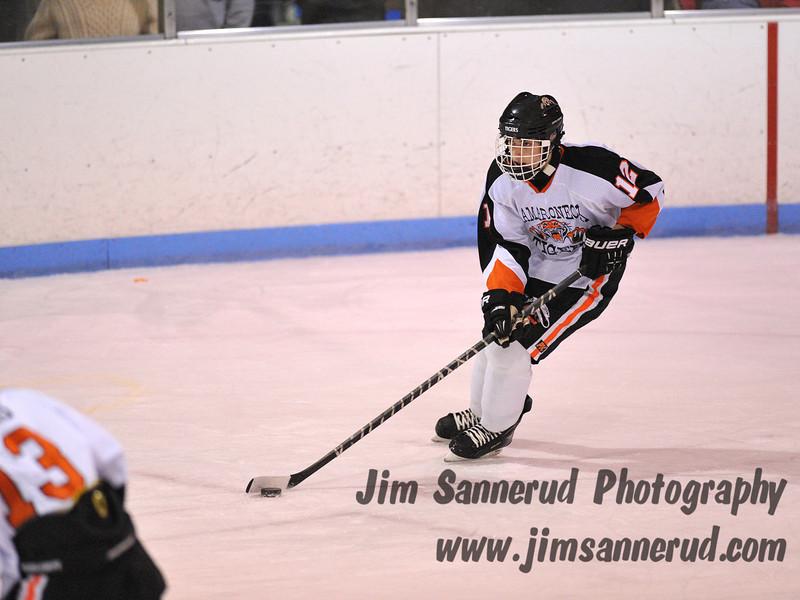 Senior defenseman #12 Matt Fryer skates the puck. White Plains High School Tigers vs. Mamaroneck Tigers Varsity Ice Hockey at Hommocks Park Ice Rink, Friday, December 21, 2012, White Plains lost 3-1
