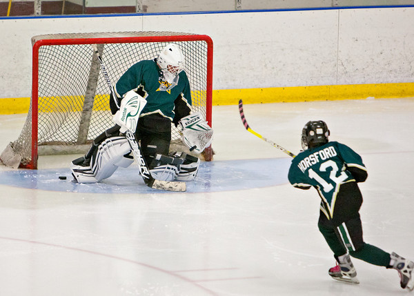 2012-2013 Emmaus JV Hockey