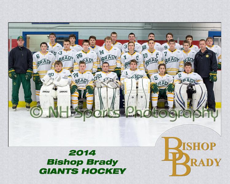 Brady Boys Hockey - Player and Team Photos