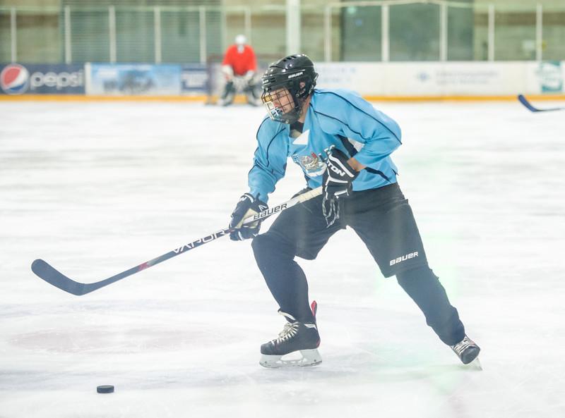 GB1_7972 20161228 2241   Hockey