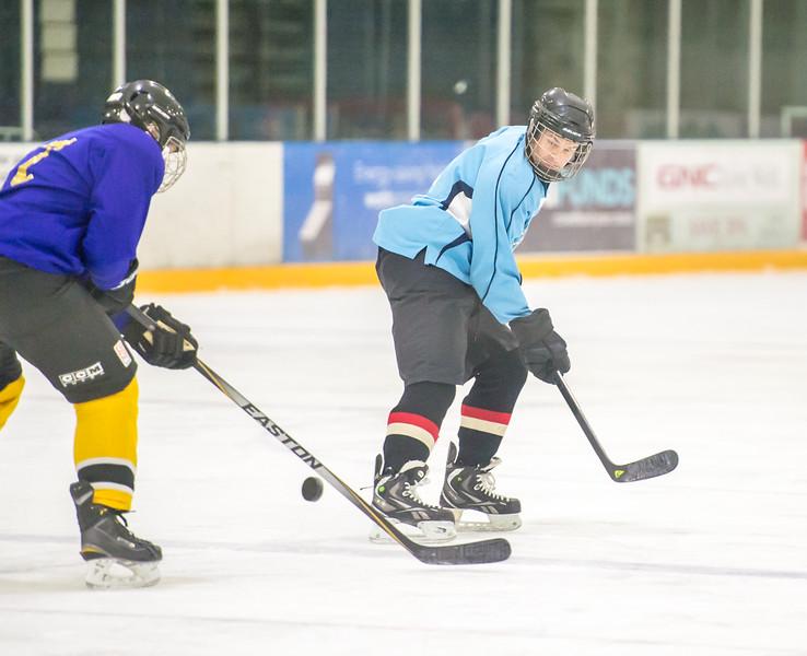 GB1_8403 20161228 2257   Hockey