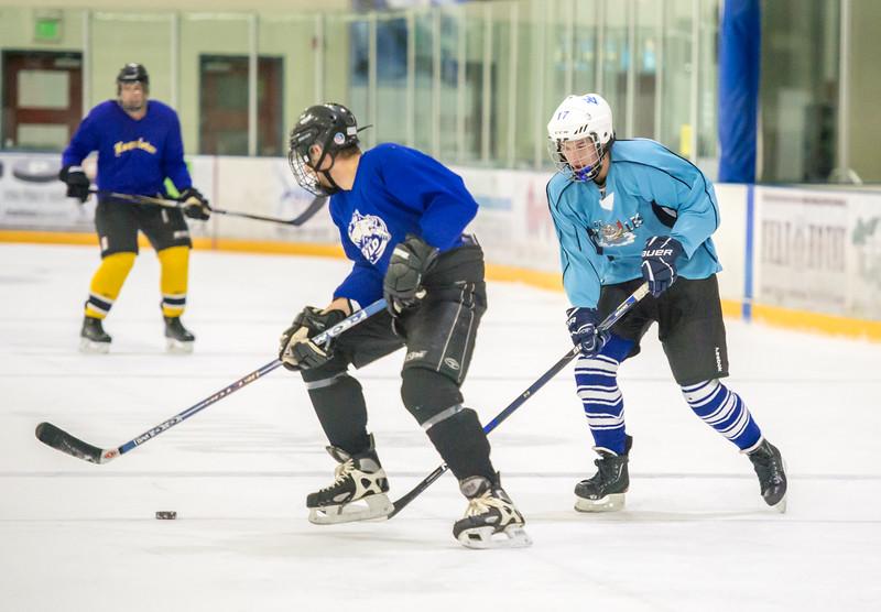 GB1_8584 20161228 2308   Hockey