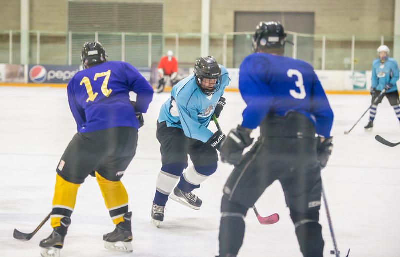 GB1_8356 20161228 2255   Hockey
