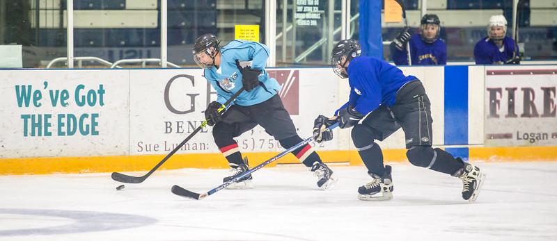 GB1_8154 20161228 2249   Hockey