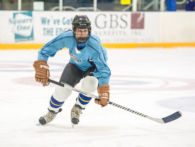 GB1_8236 20161228 2251   Hockey