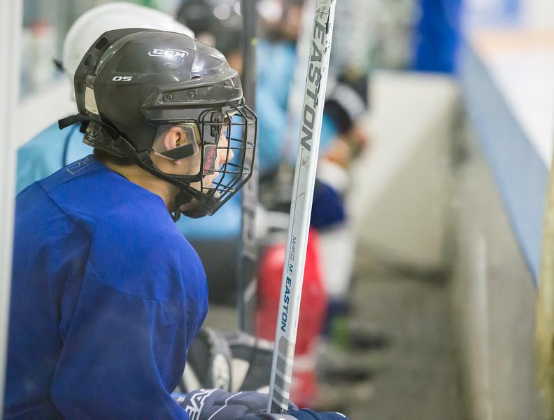 GB1_0067 20161229 2233   IceHoles Hockey