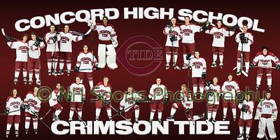 Team Poster_2016