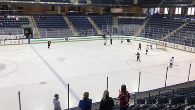 squirt hockey 2017 (1)