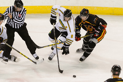Decatur Blaze @ Chicago Cougars @ Sears Centre 10.03.15