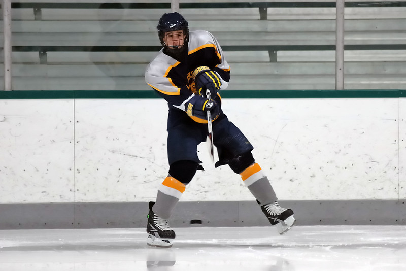 Clarkston JV Hockey 02-06-10 image 003_edited-1