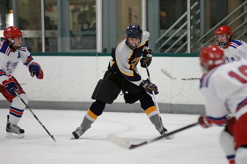 Clarkston JV Hockey 02-06-10 image 047_edited-1