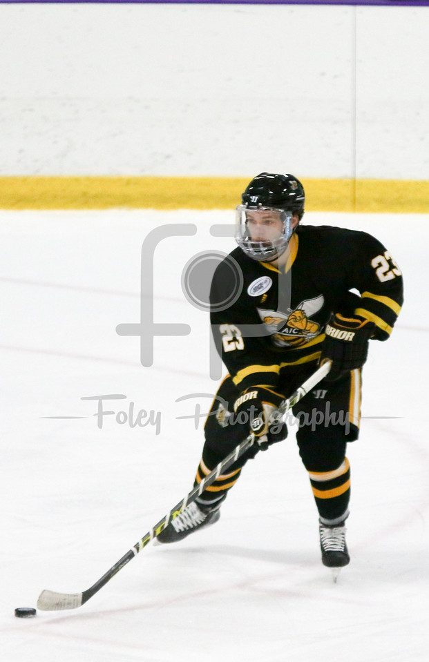 Thursday, November 24, 2016; Worcester, Massachusetts;  during an Atlantic Hockey League matchup between the Crusaders and Yellow Jackets. Holy Cross won the game 3-0