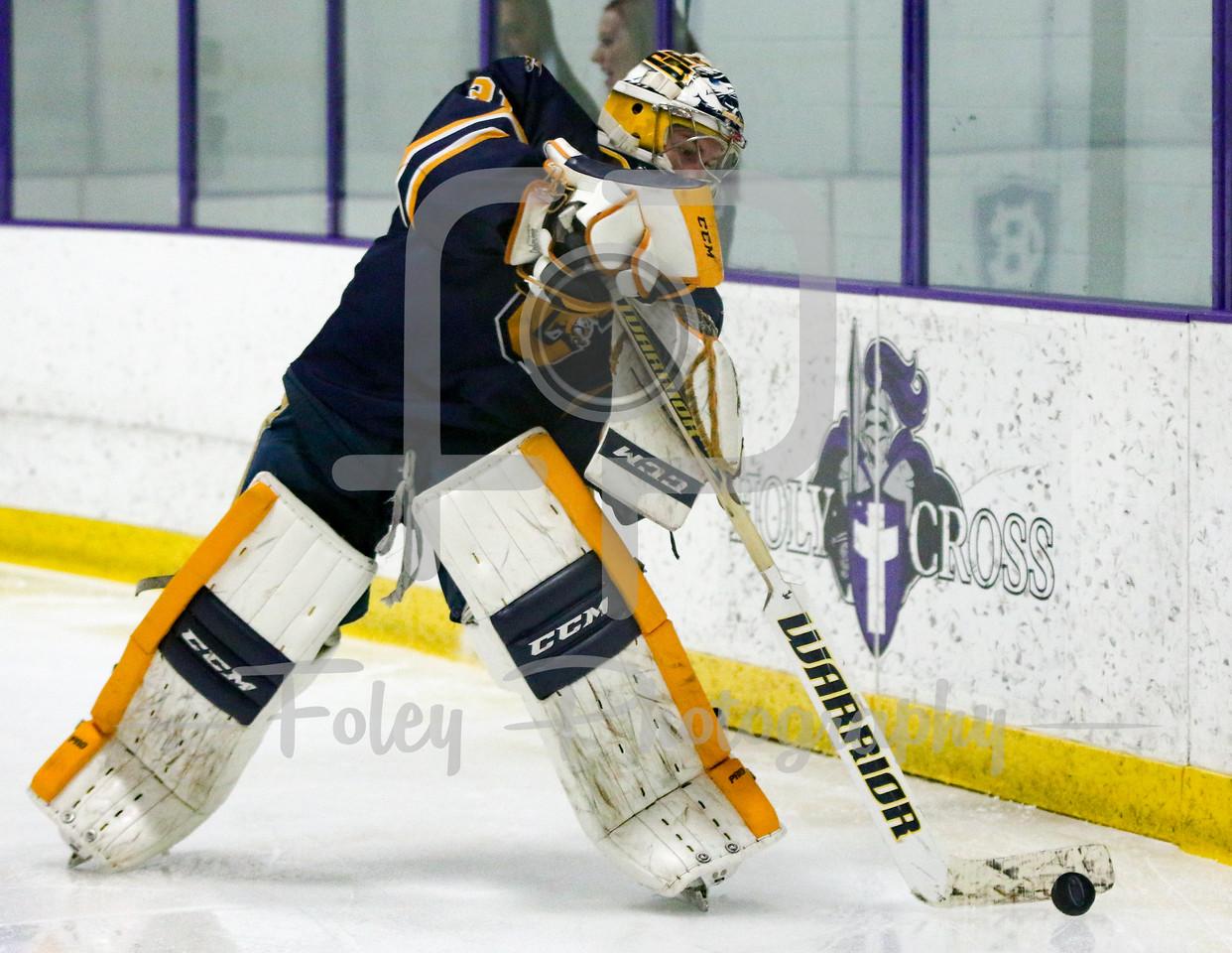 Canisius Golden Griffins goalie Simon Hofley (31)