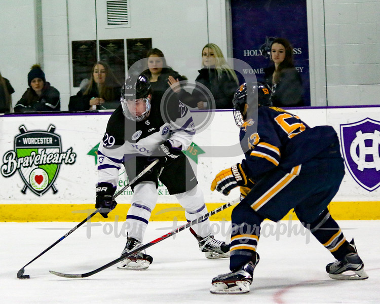 Holy Cross Crusaders forward Mike Barrett (29) Canisius Golden Griffins forward Jeff Murray (51)