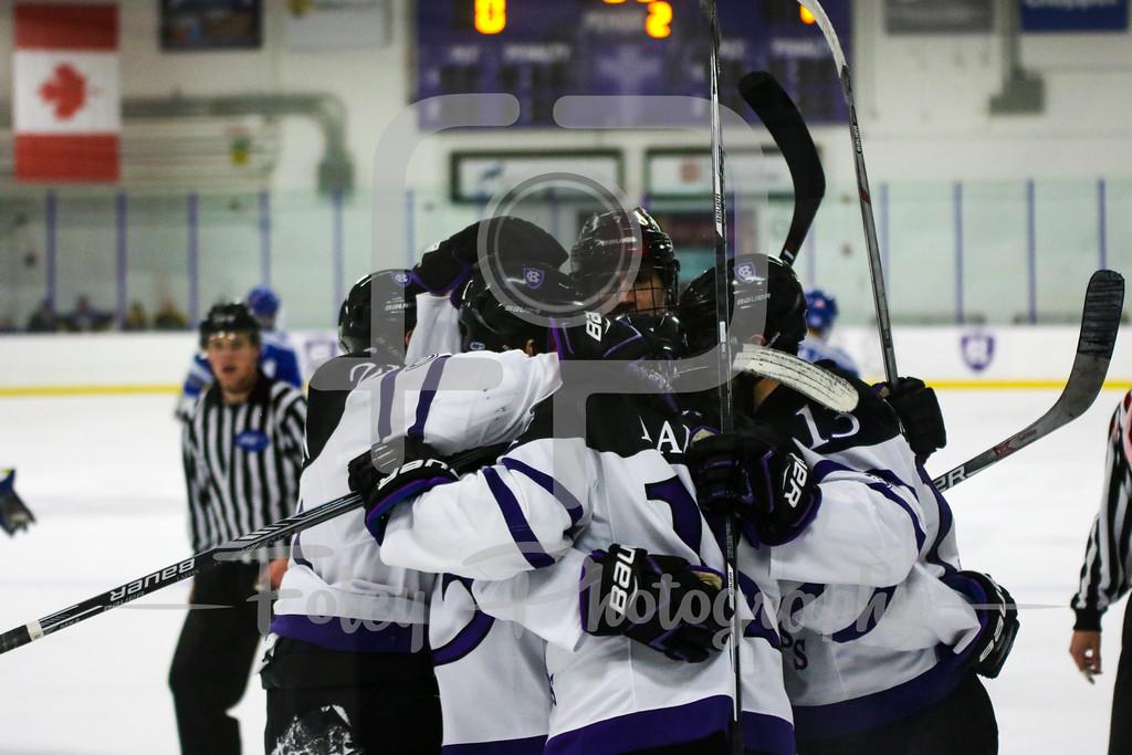 Holy Cross Crusaders Hockey Team Celebrates