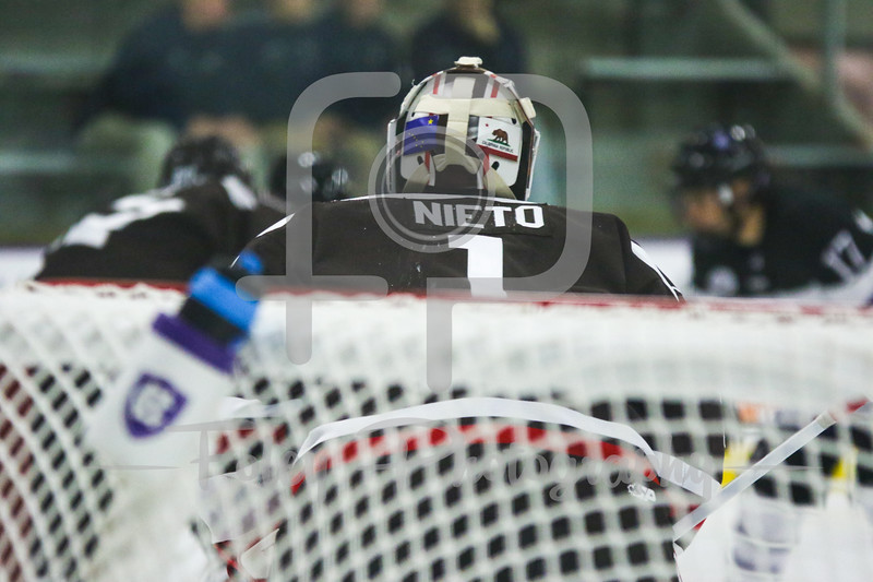 Brown Bears goalie Gavin Nieto (1)