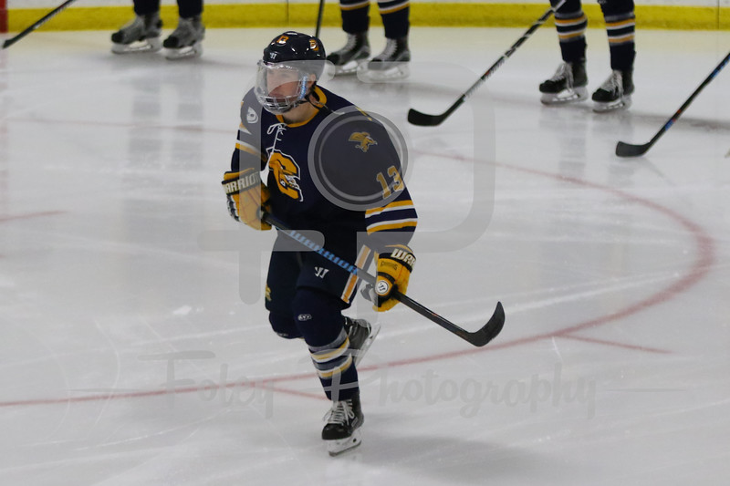 Canisius Golden Griffins forward Dylan McLaughlin (13)