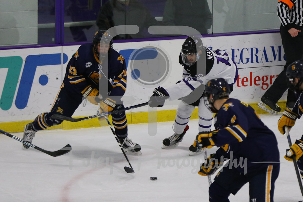 Canisius Golden Griffins forward Casey Jerry (23) Holy Cross Crusaders forward Jay Mackie (18)