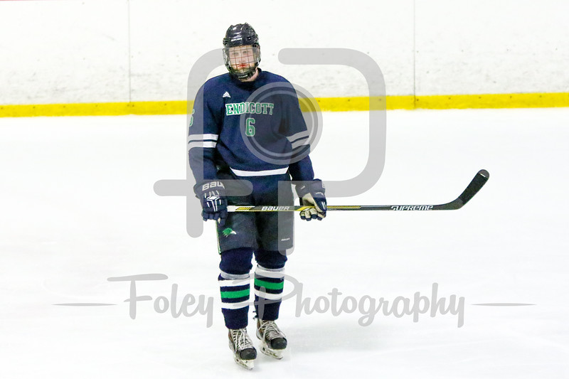 Endicott College Gulls defenseman Connor Costello (6)