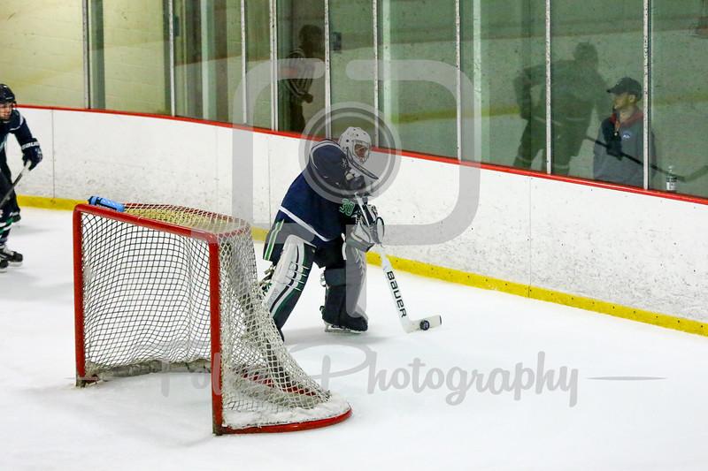 Endicott College Gulls goalie Kevin Aldridge (30)