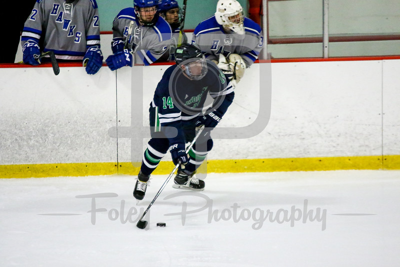 Endicott College Gulls defenseman Carter Horwitz (14)