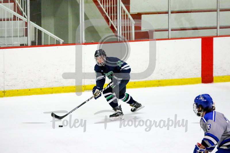 Endicott College Gulls defenseman Carter Horwitz (14)