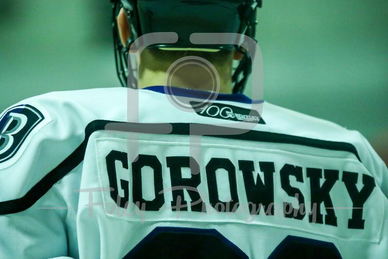 Bentley Falcons forward Ryner Gorowsky (22)