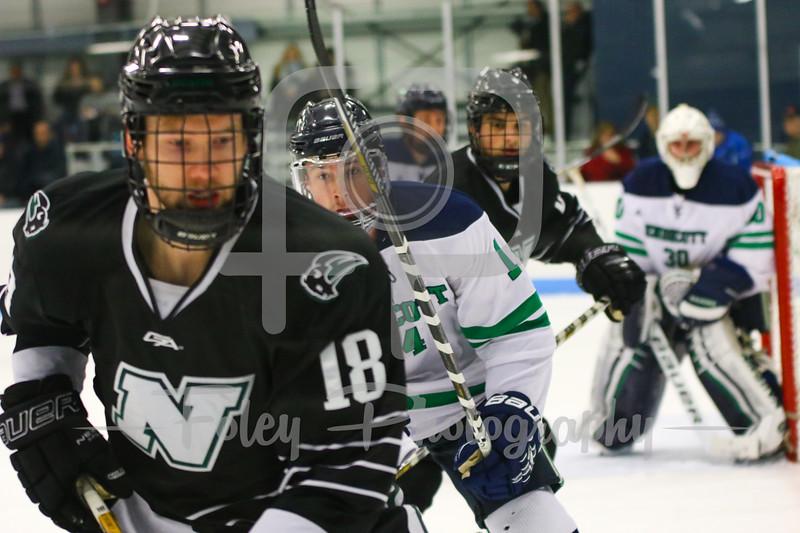 Nichols College forward Ryan Hunter (18) Endicott College defenseman Carter Horwitz (14)