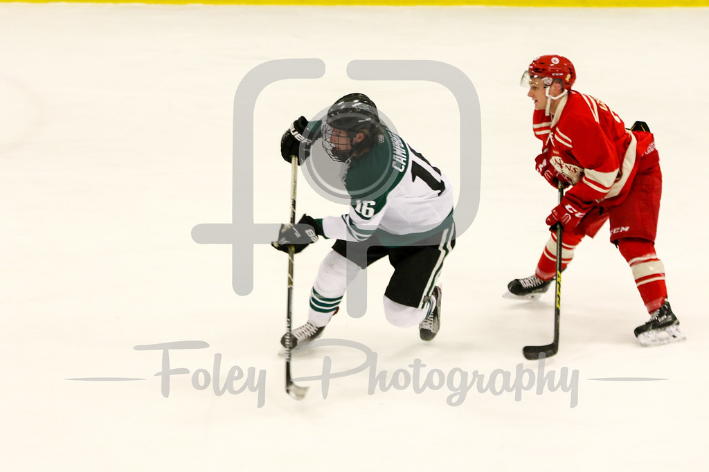 Wednesday, December 28, 2016; Harrisville, RI;  during the first period in the Bison 3-1 win over Royal Military College in an exhibition game.