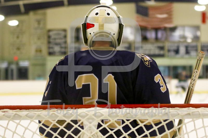 Suffolk College Rams goalie Will Ribas (31)