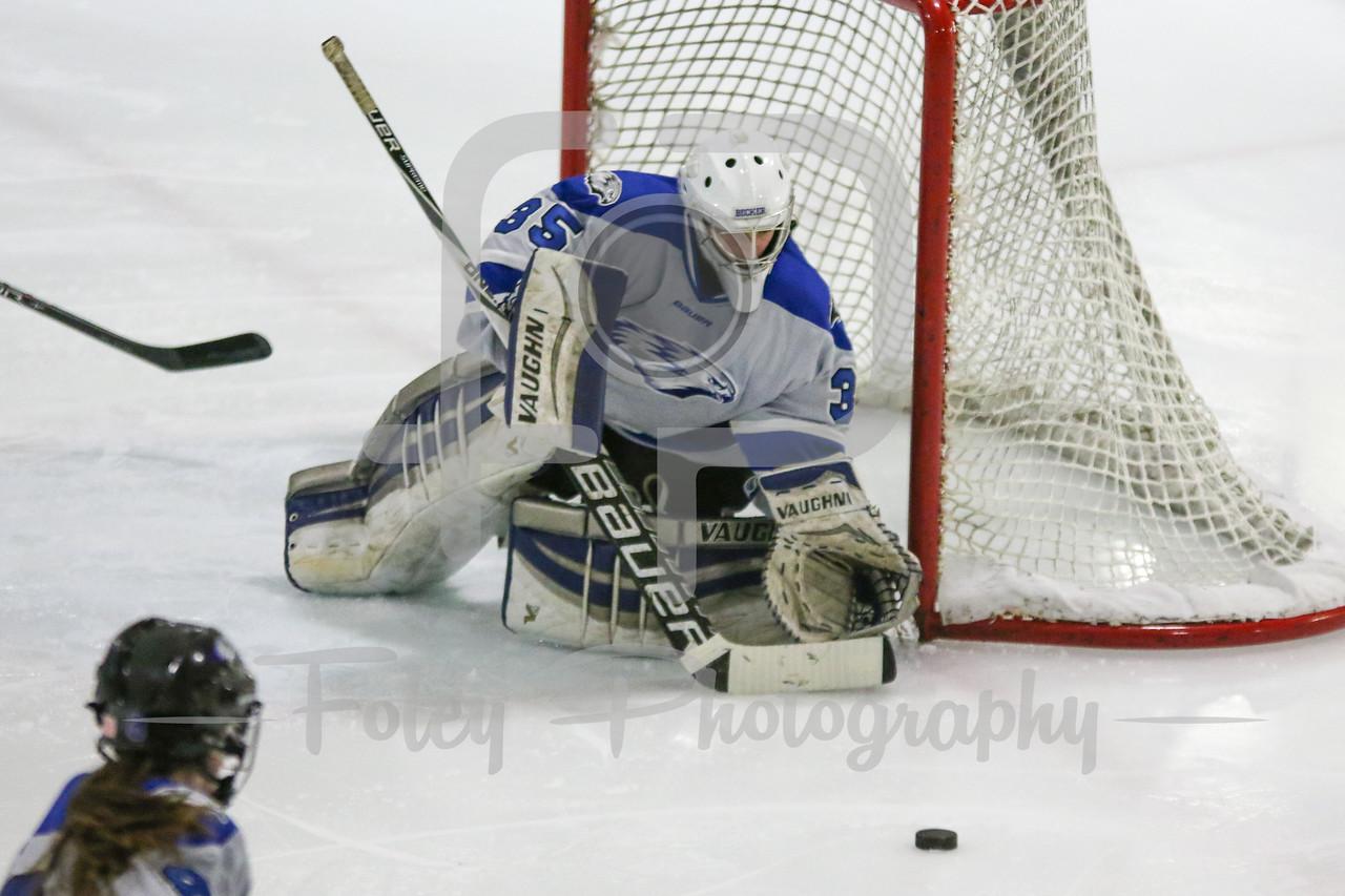 Becker College Hawks goalie Julia Johnson (35)