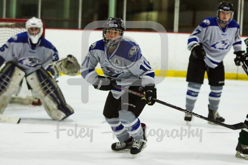 Becker College Hawks defenseman Hannah Elmer (11)