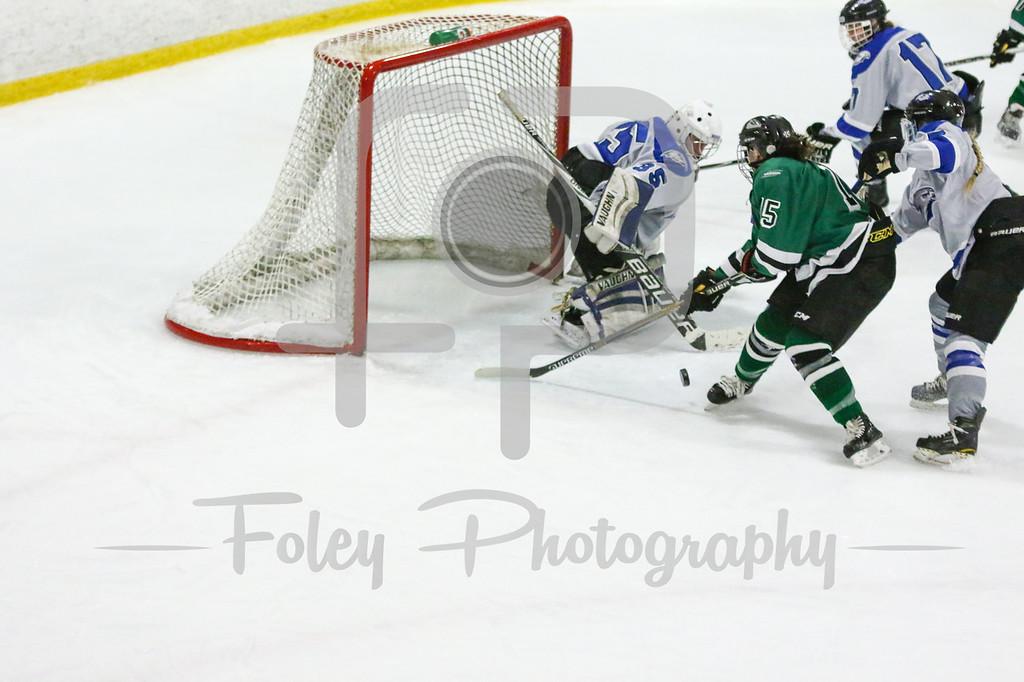 Stevenson University Mustangs Allie Sabatini (15) Becker College Hawks goalie Julia Johnson (35)