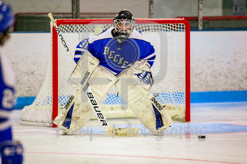 Becker College Hawks goalie Richard D'Ortenzio (31)