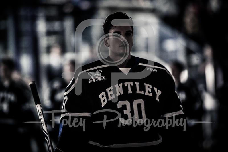 Bentley Falcons goalie Aidan Pelino (30)
