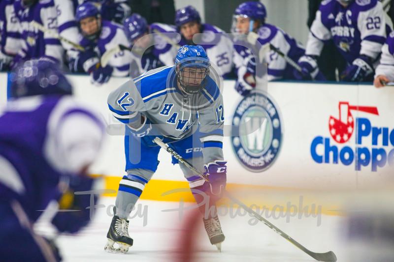 Becker College Hawks defenseman Brian Greene (12)