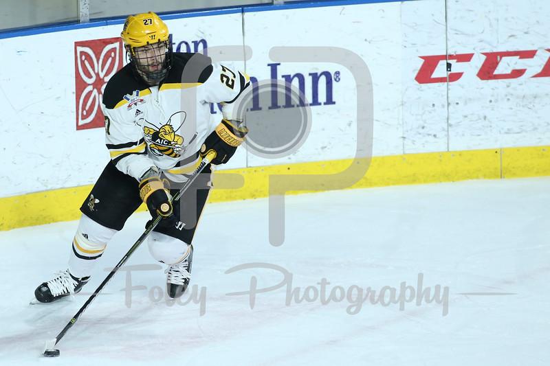 AIC Yellow Jackets defenseman Janis Jaks (27)