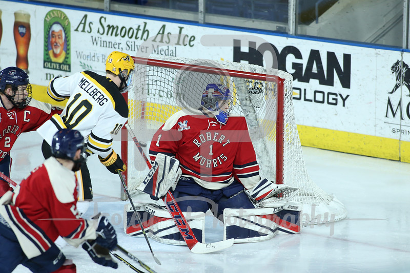 Robert Morris Colonials goaltender Francis Marotte (1) AIC Yellow Jackets forward Hugo Reinhardt (13)