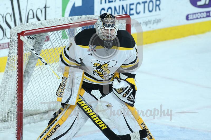 AIC Yellow Jackets goaltender Zackarias Skog (1)