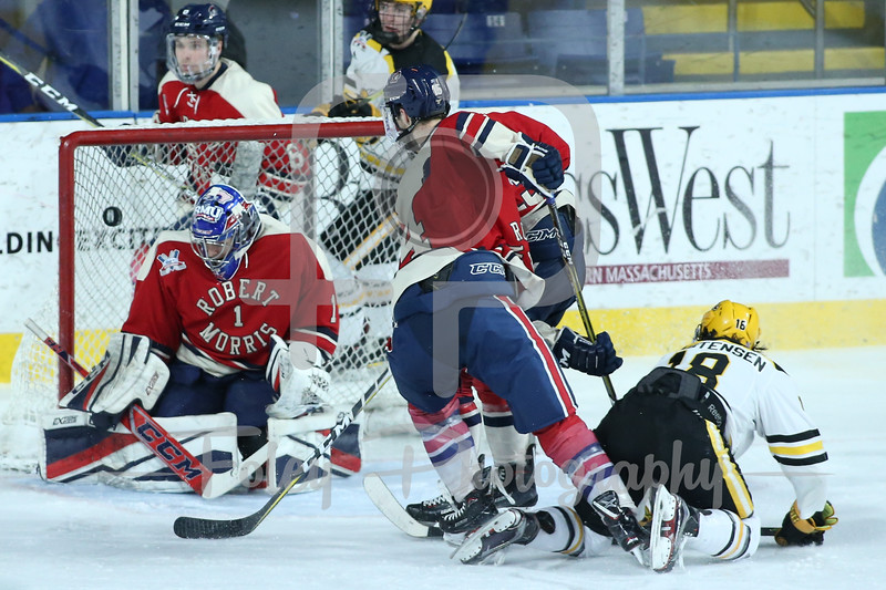 Robert Morris Colonials goaltender Francis Marotte (1) AIC Yellow Jackets forward Blake Christensen (18)