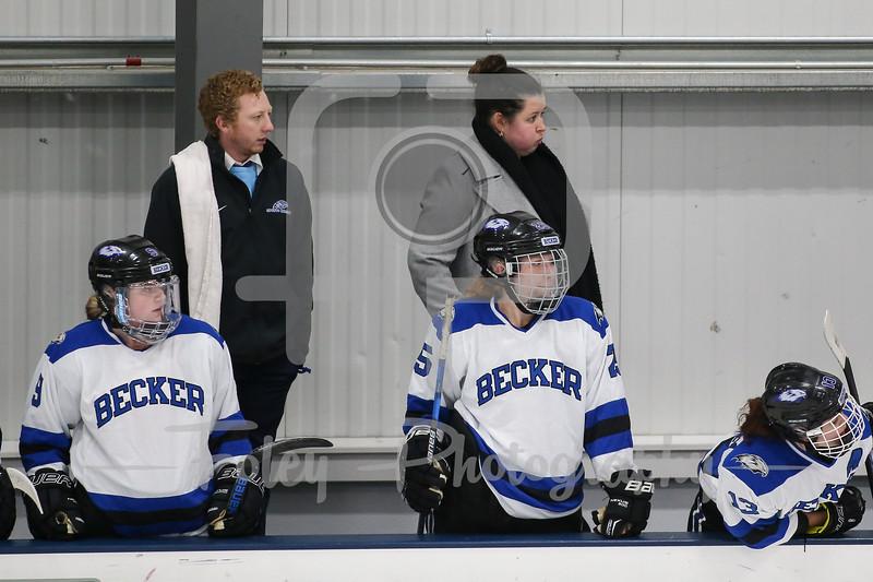 Becker College Hawks head coach Eliza Kelley