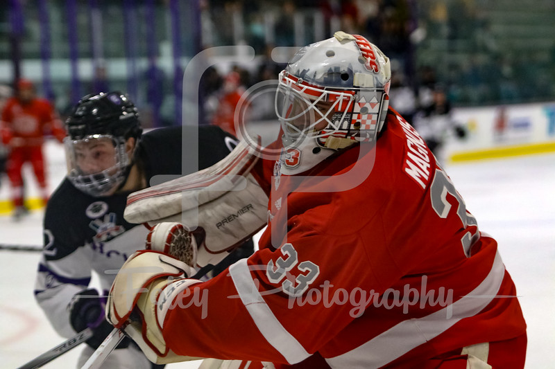 Sacred Heart Pioneers goaltender Brett Magnus (33) Holy Cross Crusaders forward Scott Pooley (12)